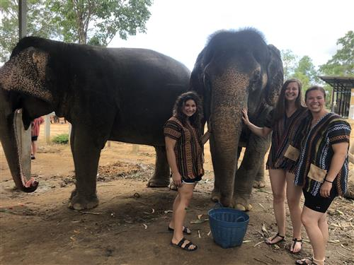 In Thailand with the elephants!