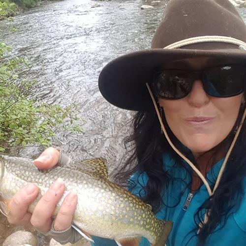 Brooke Trout