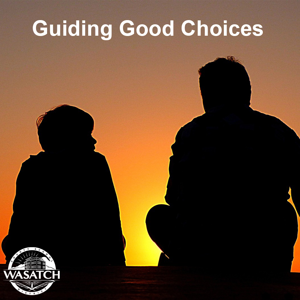 Guiding Good Choices